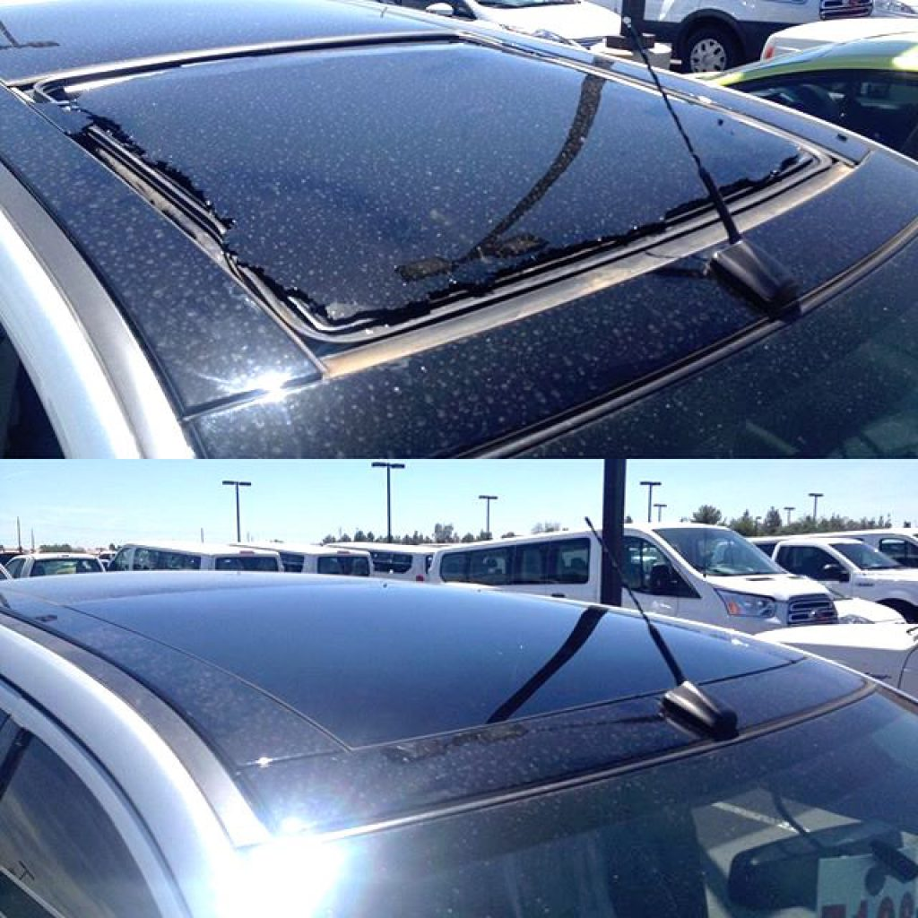 Glass Roof Replacement